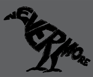 nevermore, raven, and edgar allan poe image