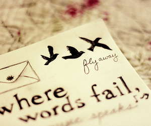 words, birds, and fly image