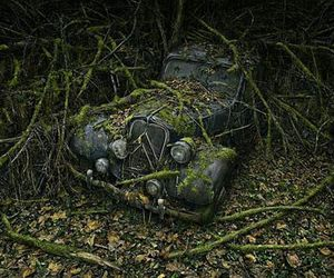 car, nature, and old image
