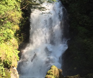 nature, waterfall, and summer to autumn image