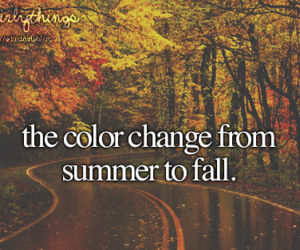 fall, girl, and summer image