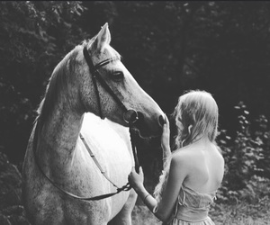 black&white, horse, and moment image