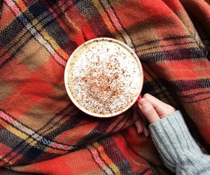 autumn, sweater, and blanket image