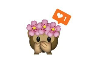 flower crown, monkey, and mono image