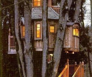 house, tree, and tree house image
