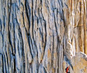 amazing, climbing, and nature image