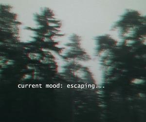 black, dark, and escape image