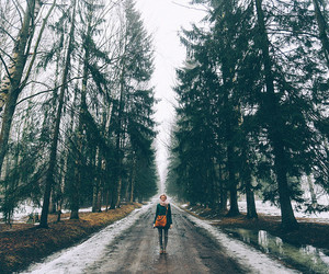forest, travel, and girl image