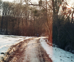 snow, photography, and winter image