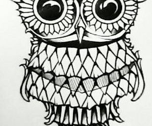 owl and drawing image