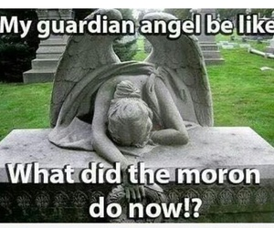 funny, guardian angel, and angel image