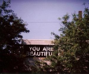 beautiful, vintage, and billboard image