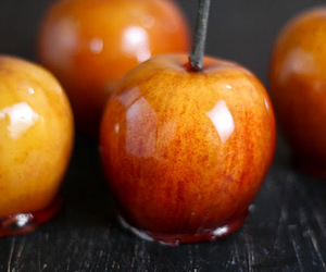 apple, autumn, and caramel apples image