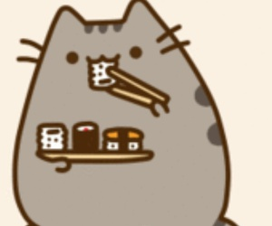 cat, food, and sushi image