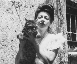 cat, kitty, and remedios varo image