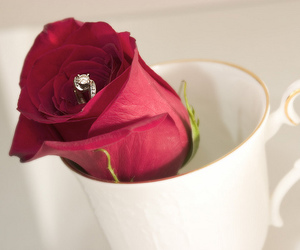 ring, rose, and love image