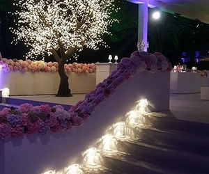 flower, light, and location image
