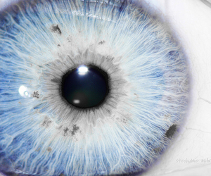 beautiful, eye, and color image