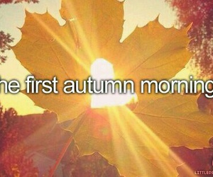 autumn, fall, and morning image