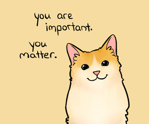 cat, quotes, and important image