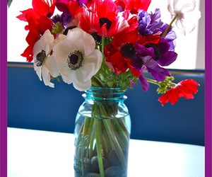 anemone, blue, and booth image