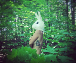bunny, bunny mask, and forest image