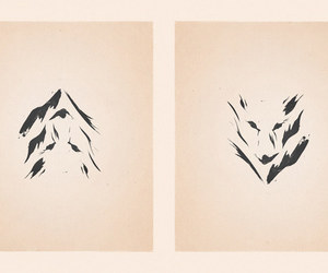 optical illusion and minimalist wolf image