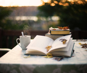 bokeh, book, and leaves image