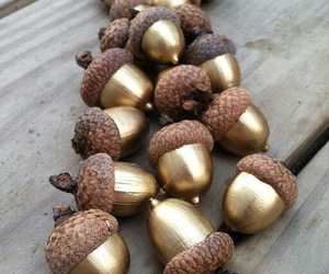 diy, gold, and acorn image
