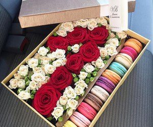flowers, roses, and macarons image