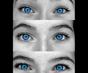 blacknwhite, blue, and blueeyes image
