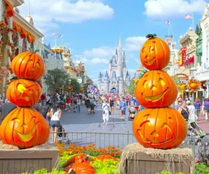 amazing, october, and pumpkin image