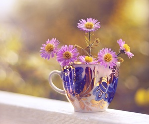 flowers and cup image