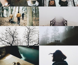 adventure, autumn, and photography image