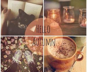 autumn, fall, and hello image