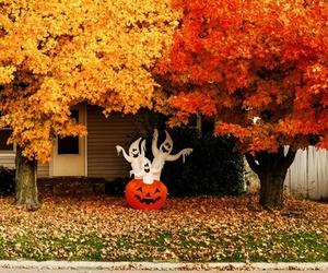 amazing, house, and autumn image