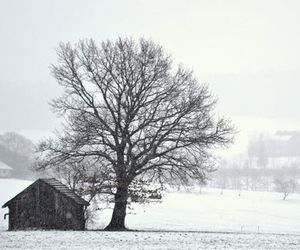 house, plain, and snow image