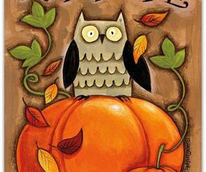 autumn, cold days, and owl image