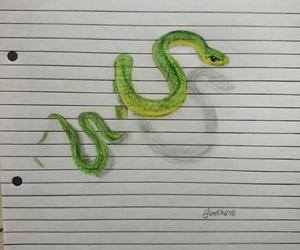 drawing, snake, and green image