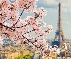 europe, paris, and traveling image