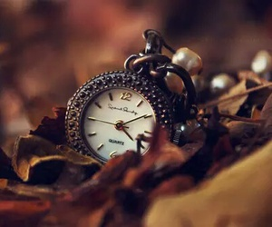 clock, leaves, and pocket watch image