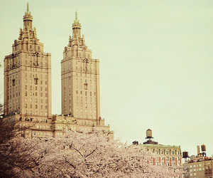 architecture, city, and spring image