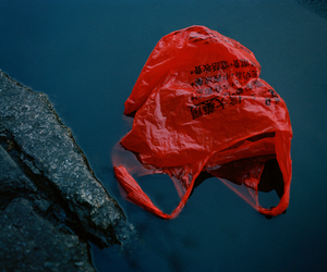 red, water, and bag image