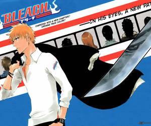 bleach, anime, and manga image