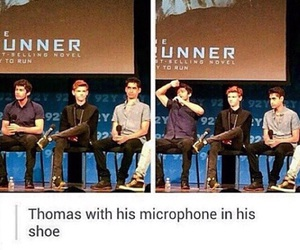 thomas sangster, the maze runner, and funny image
