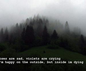 sad, grunge, and rose image