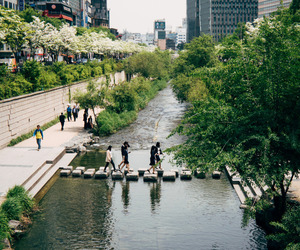 city, japan, and nature image