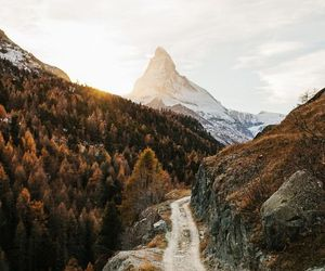 nature, mountains, and autumn image