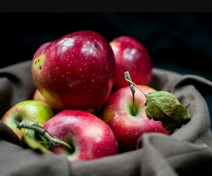 apples, autumn, and photo image