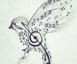 music and bird image